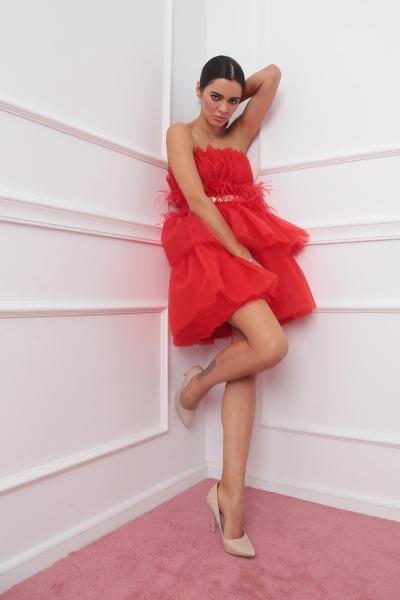 Strapless short tulle dress